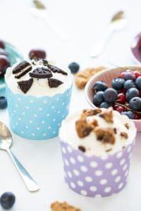 Healthy Sugar Free Frozen Yogurt