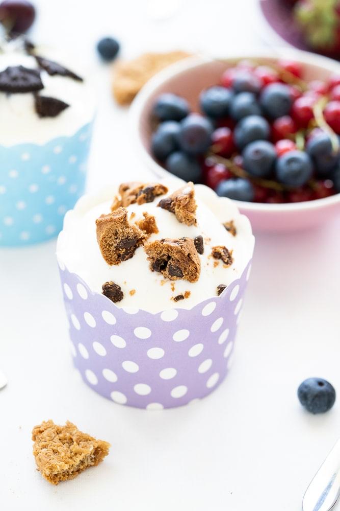 make your own sugar-free frozen yogurt recipe