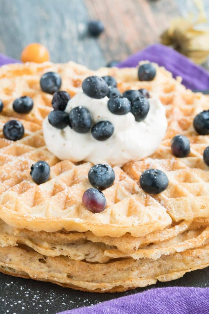 flourless sugar-free low carb waffle recipe