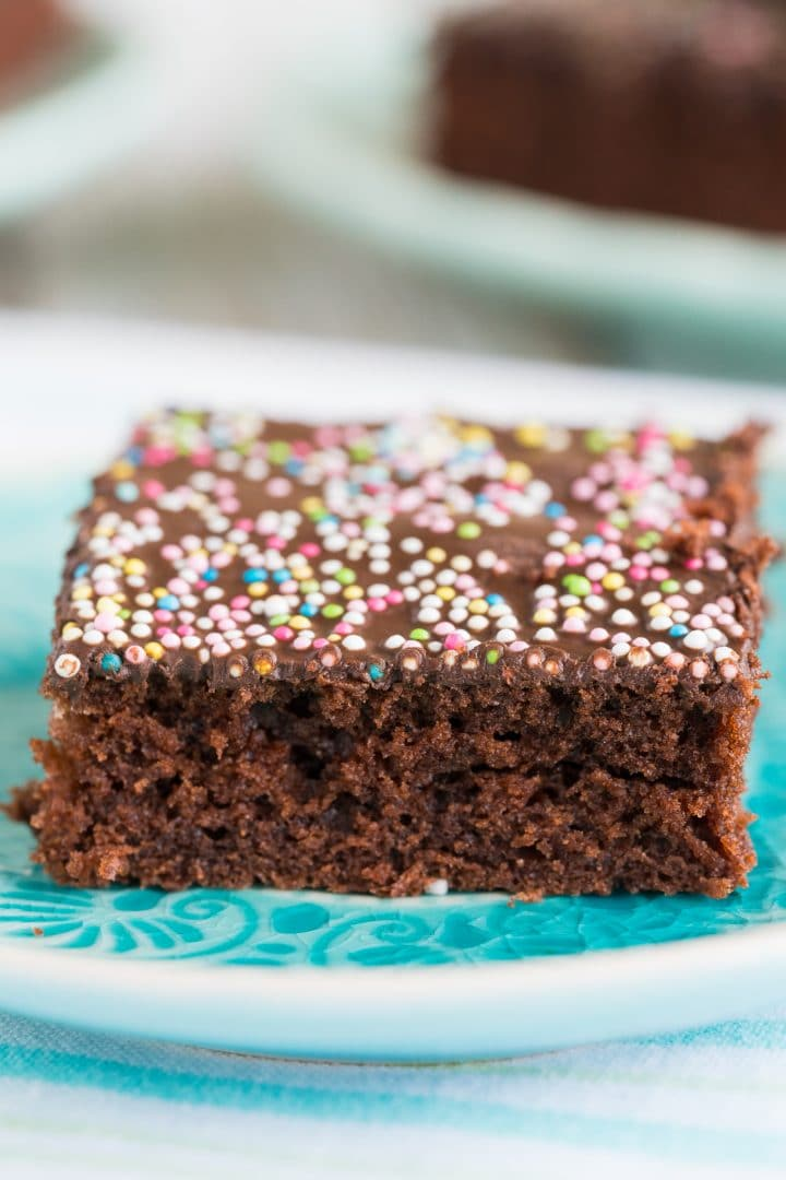 delicious-chocolate-cake-from-the-baking-sheet